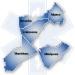 EMR: Recertification, including Late Fee*